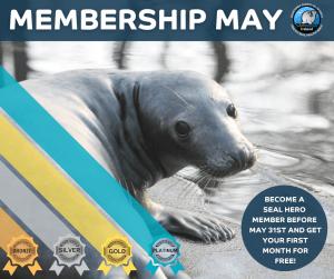 Seal Heroes Memberships