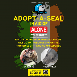 Seal Adoption In Aid Of 'ALONE'