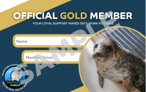 Sample Membership Card Gold