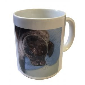 SRI Common Seal Ceramic Mug