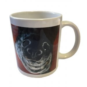 SRI Grey Seal Ceramic Mug
