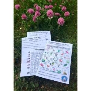 Backyard Biodiversity Digital Download