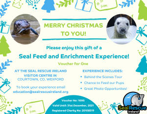 Seal Feed And Enrichment Experience Voucher