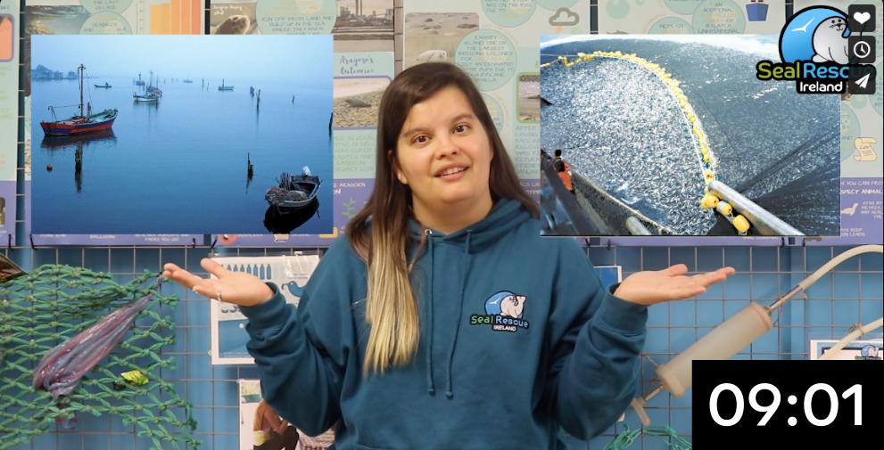 Unsustainable Fishing