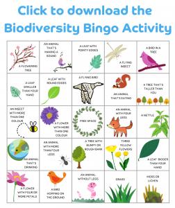 Biodiversity Bingo