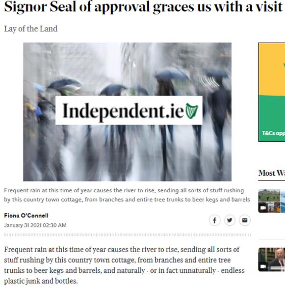 Seal Rescue Ireland Signor Seal Irish Independent Article