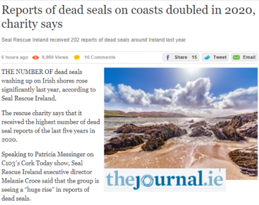 Dead Seals The Journal.ie Article
